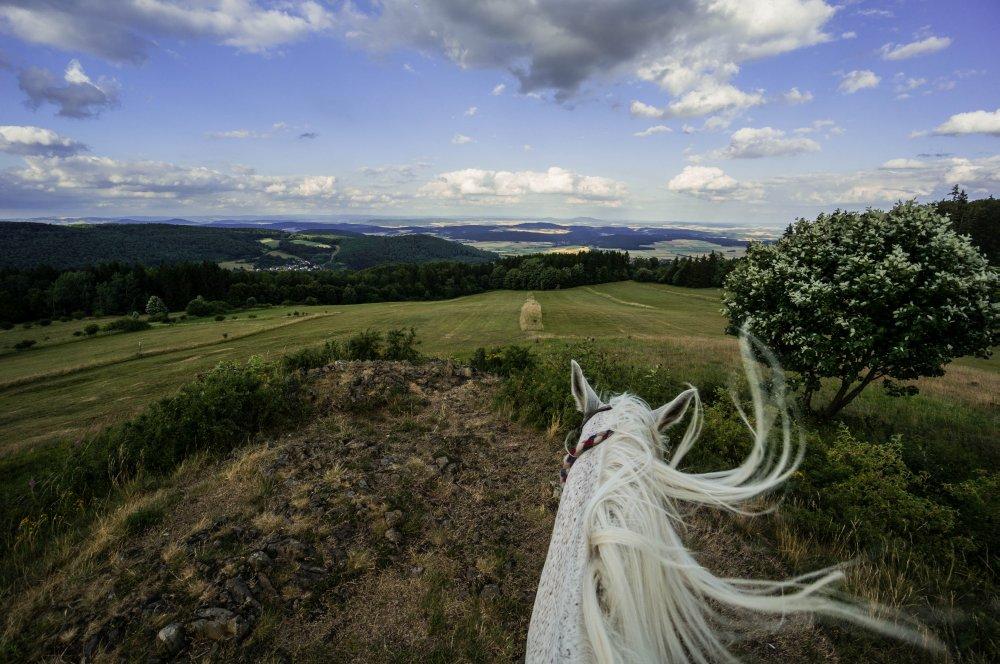 Landschaft vom Pferderücken aus